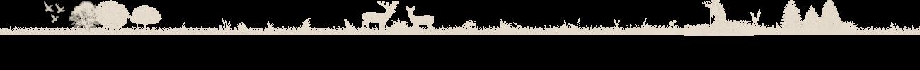 divisor header