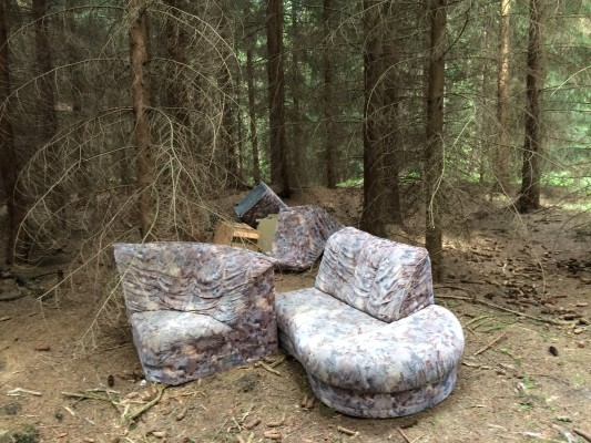 Ich sehe den Wald vor lauter…Müll nicht mehr