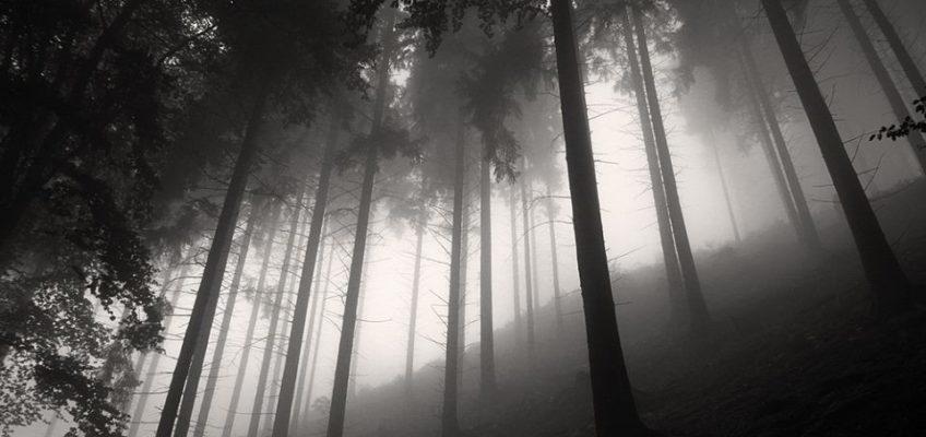 Geheimnisvolle und Sehenswerte Orte im Erzgebirge