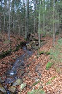 Zuflüsse zur Talsperre